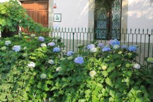 Casa Jardín de la Plata, Apartmanok  Baños de Montemayor - big - 30