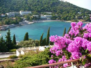 Apartments Silva, Appartamenti  Dubrovnik - big - 1