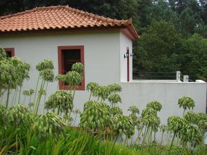 Casa Oliveira Camacha