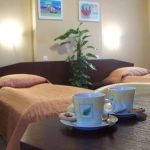 Accommodation in Silesia