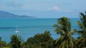 obrázek - Villa Kubo