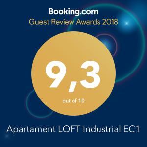 Apartament LOFT Industrial EC1