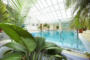 Morskoy, Hotel  Odessa - big - 48