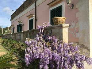 Holiday home Elena, Dovolenkové domy  Ruffano - big - 7