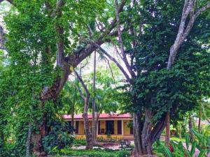 Hacienda Chichen (4 of 59)