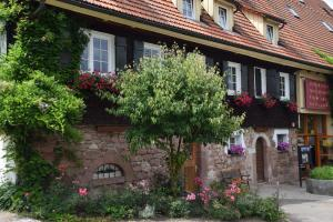 Gutshof-Hotel Waldknechtshof - Harlisberg