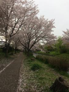 Suzume-An, Kúriák  Kiotó - big - 95