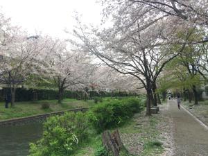 Suzume-An, Kúriák  Kiotó - big - 100