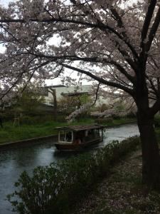 Suzume-An, Kúriák  Kiotó - big - 99