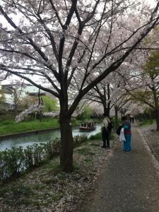 Suzume-An, Kúriák  Kiotó - big - 140