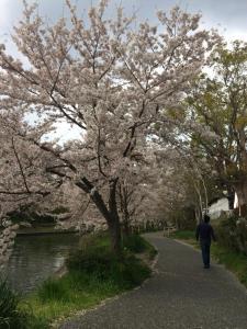 Suzume-An, Kúriák  Kiotó - big - 123