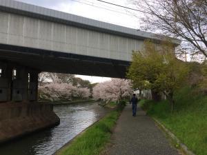 Suzume-An, Kúriák  Kiotó - big - 158