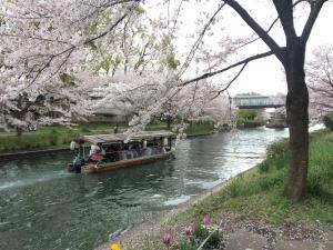 Suzume-An, Kúriák  Kiotó - big - 51