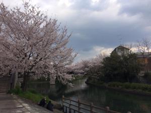 Suzume-An, Kúriák  Kiotó - big - 144