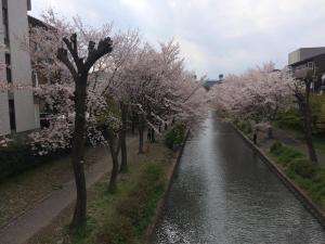 Suzume-An, Kúriák  Kiotó - big - 118
