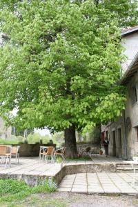 Auberge du Précontent, Bed and breakfasts  Arfeuilles - big - 33