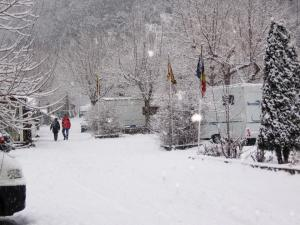 Camping Pla, Canillo