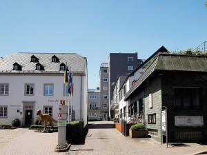 Holiday home Fabry Im Hof 1 - Holsthum