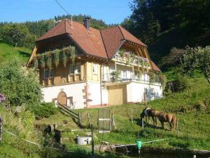 Vollmershof - Erzenbach