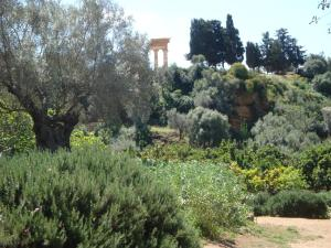 Guest House Artemide, Bed and breakfasts  Agrigento - big - 39