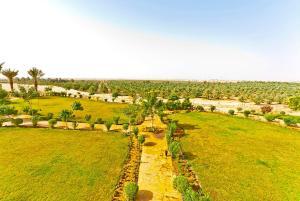 Al Malfa Resort, Курортные отели  Унайза - big - 19