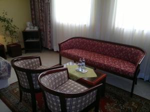 Bellevue Hotel and Resort, Hotels  Bardejov - big - 3