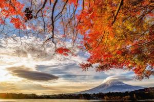 Daikokuya Mt.Fuji, Penzióny  Fujiyoshida - big - 64