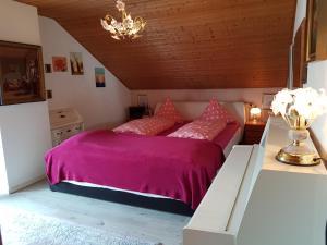 Haus Marlene - Apartment - Memmingen