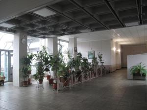 Битцевский парк кв 183