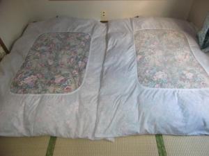 Nakano, Vendégházak  Fudzsijosida - big - 2