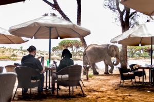 Elephant Bedroom Camp - Sambur..
