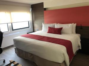 MC Suites Mexico City