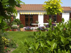 Holiday Home Duinenhuis1