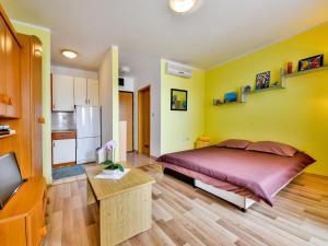 Apartment Dejana