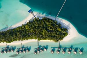 Conrad Maldives Rangali Island (40 of 123)
