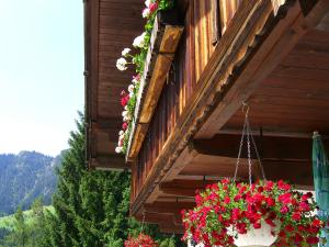 Kaiserhof - Apartment - Alpbach
