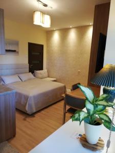 Apartment Ausra, Апартаменты  Нида - big - 18