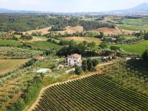 Locazione turistica Poggio Olivo.2 - AbcAlberghi.com