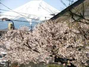 Nakano, Vendégházak  Fudzsijosida - big - 13