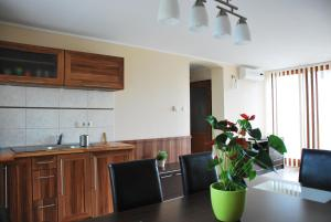 Albatrosz Apartman, Апартаменты  Дьюла - big - 22
