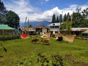 Hostels e Albergues - Dokohthang Homestay