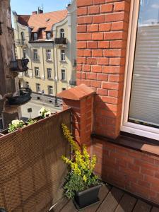Apartamenty Lazurowy i Słoneczny