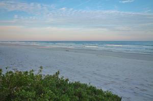Sea Coast Gardens II 105, Prázdninové domy  New Smyrna Beach - big - 37