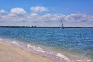 Sea Coast Gardens II 202, Nyaralók  New Smyrna Beach - big - 25