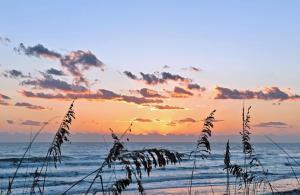 Sea Coast Gardens II 202, Nyaralók  New Smyrna Beach - big - 8