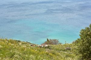 Agnanti Andros Greece