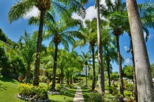 Blue Horizons Garden Resort (3 of 33)