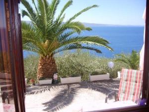 Apartments Đuro sea view