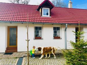 3 hviezdičkový apartmán Apartmány Jílovice Jílovice Česko