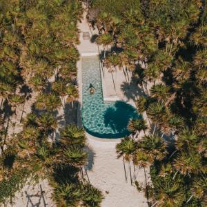 Papaya Playa Project (28 of 206)